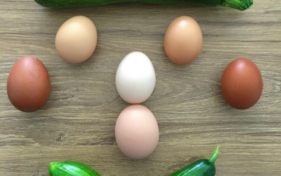 Frische Eier und Gemüse