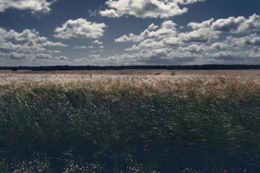 Landschaftsfotografie | Beejas World