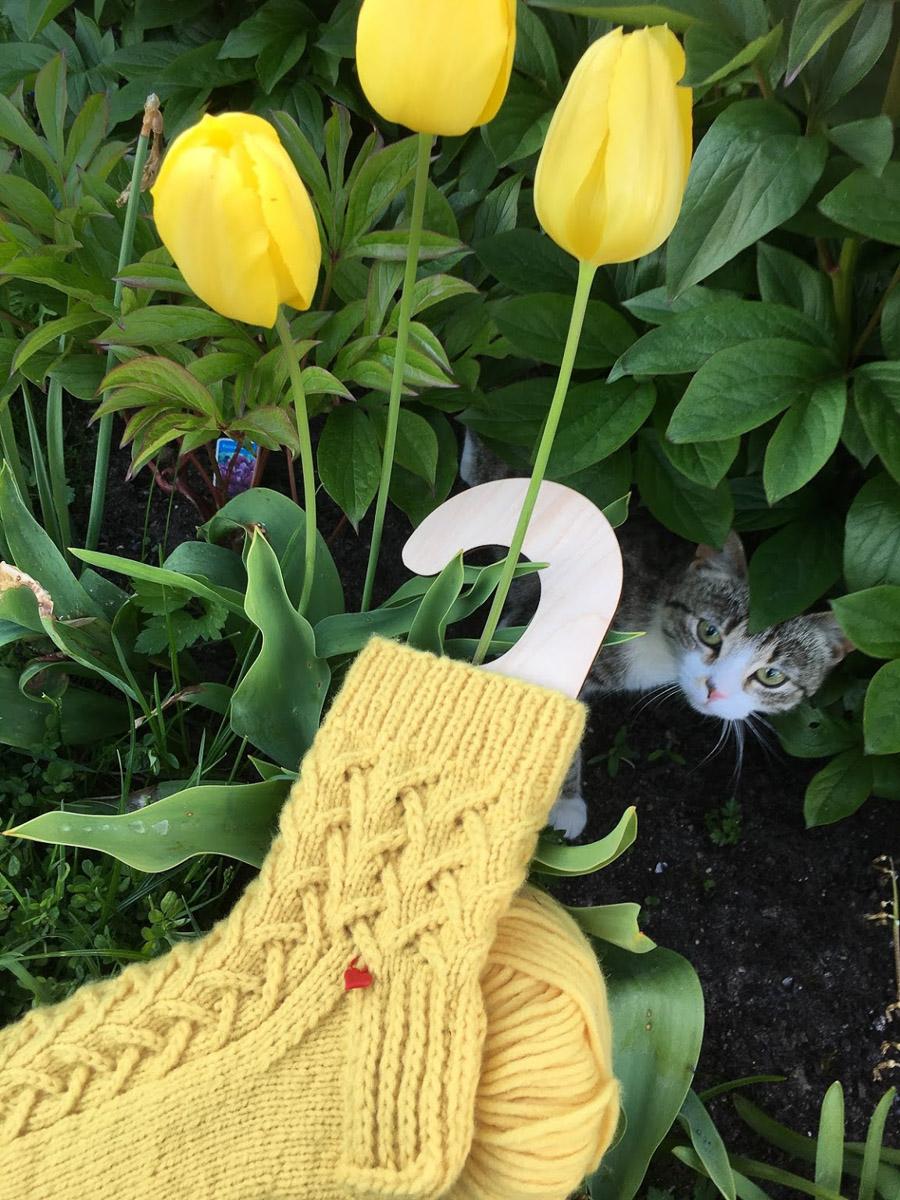 Gelbe Socken | Stricken |Beeja strickt